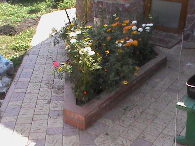 http://plitka-omsk55.ru/images/upload/DSC00724.JPG