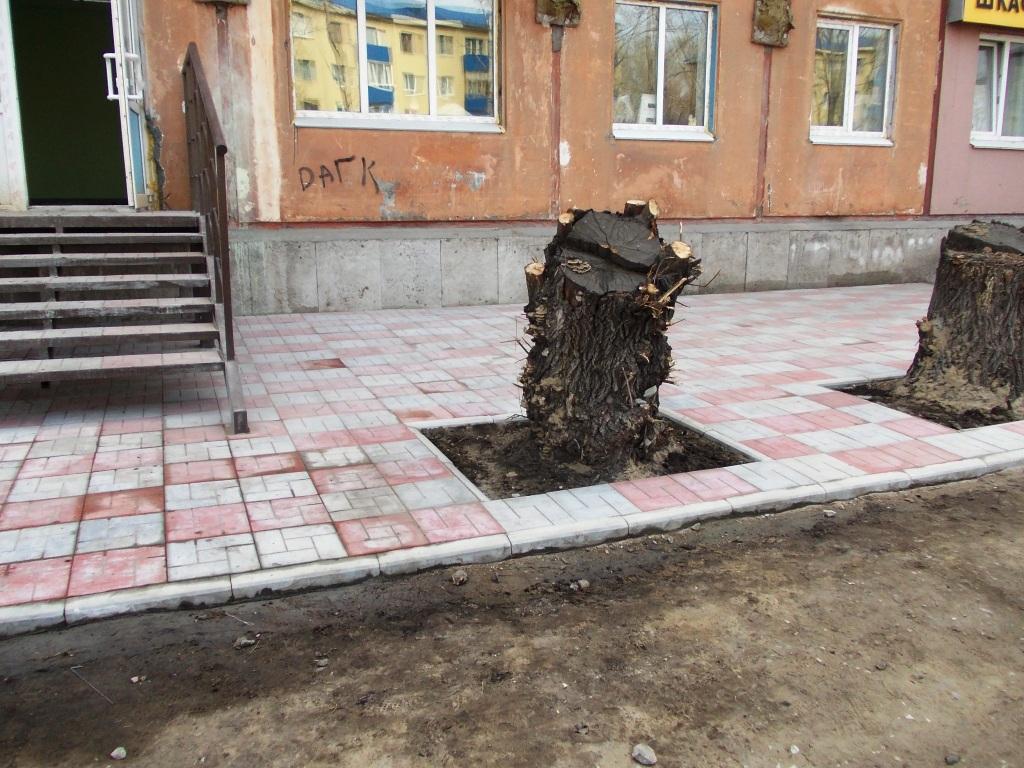 http://plitka-omsk55.ru/images/upload/DSCN0032.JPG